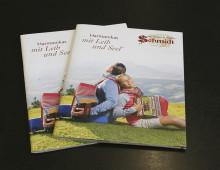 Harmonika Schmidt